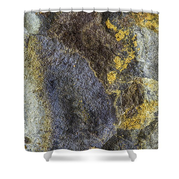 Earth Portrait 012 Shower Curtain