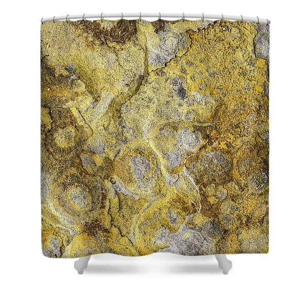 Earth Portrait 013 Shower Curtain