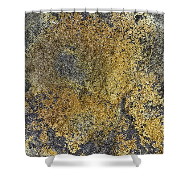 Earth Portrait 014 Shower Curtain