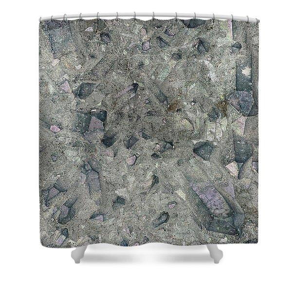 Earth Portrait 158 Shower Curtain