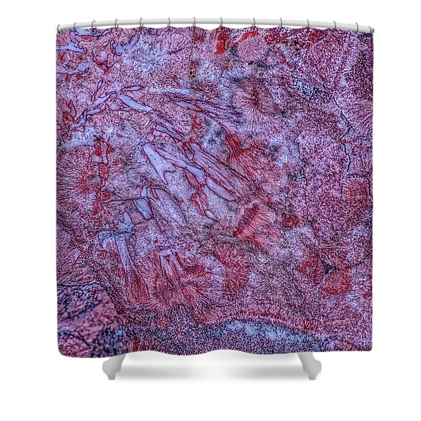 Earth Portrait 257 Shower Curtain