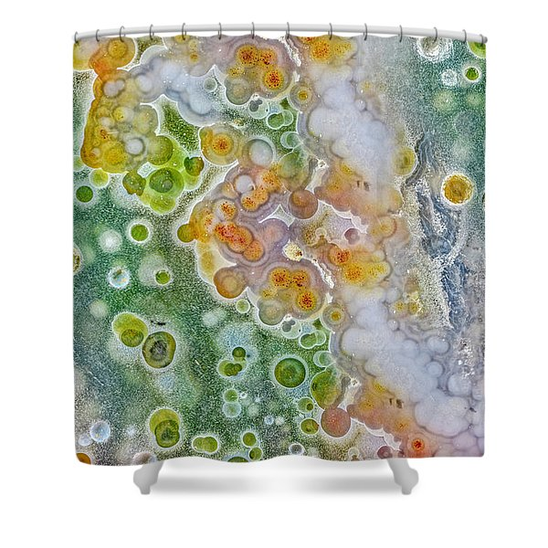Earth Portrait 277 Shower Curtain