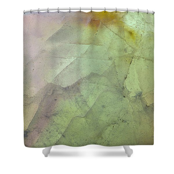 Earth Portrait 284 Shower Curtain