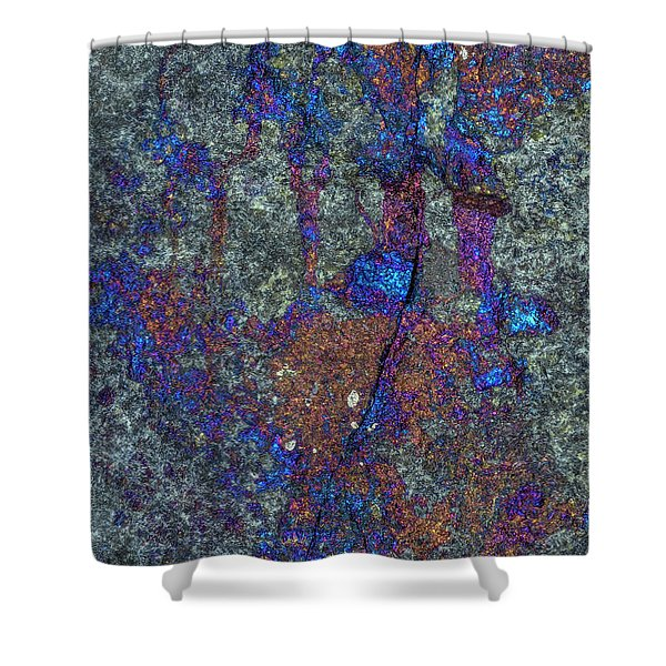 Earth Portrait 288 Shower Curtain