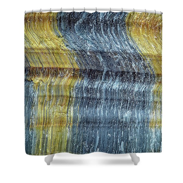 Earth Portrait 295 Shower Curtain