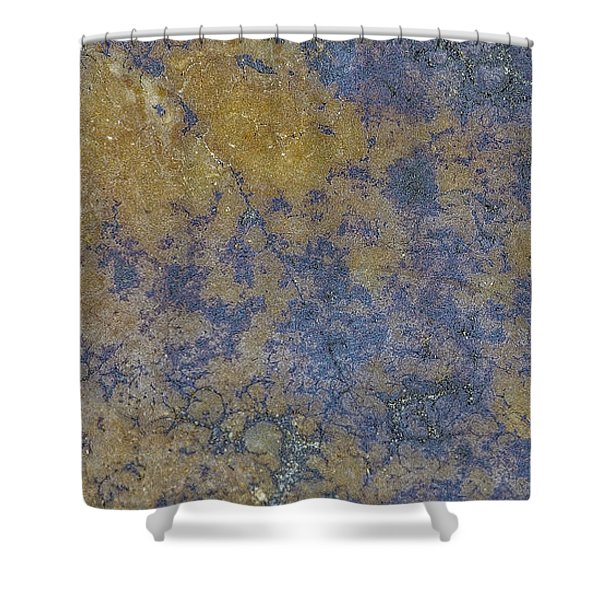 Earth Portrait L 2 Shower Curtain