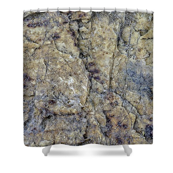 Earth Portrait L1 Shower Curtain