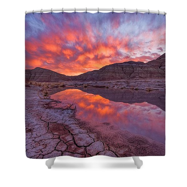 Earth Scales Shower Curtain