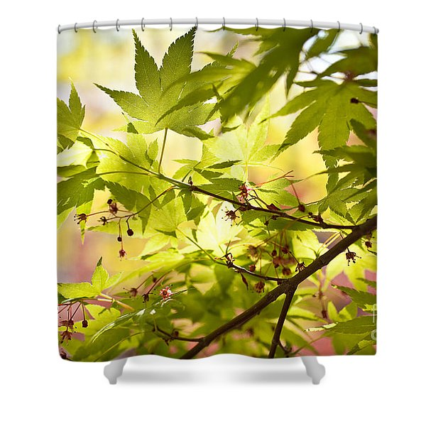 Earth Walk Shower Curtain
