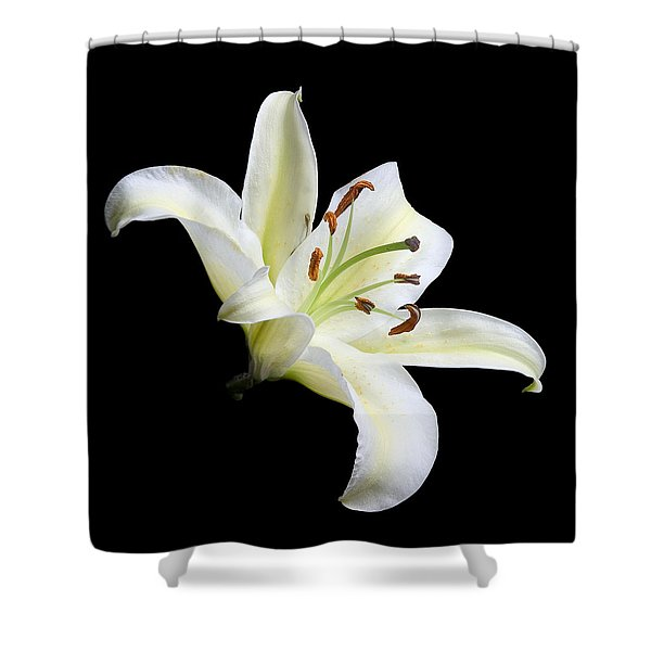 Easter Lily 1 Shower Curtain