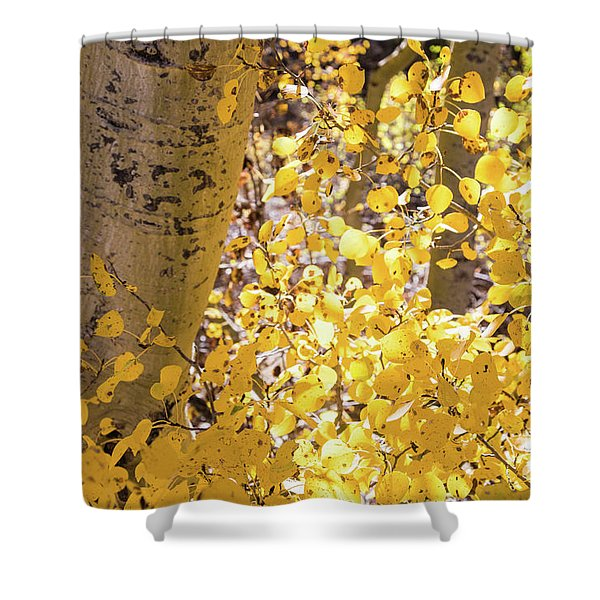 Eastern Sierras  Shower Curtain