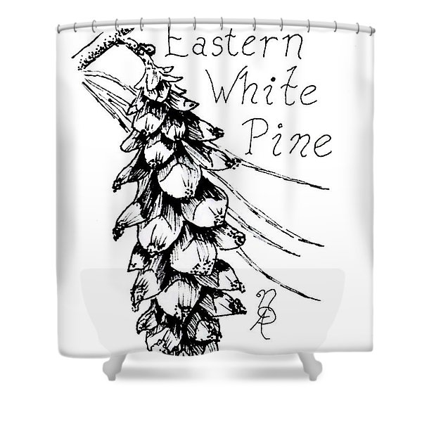 Eastern White Pine Cone On A Branch Shower Curtain