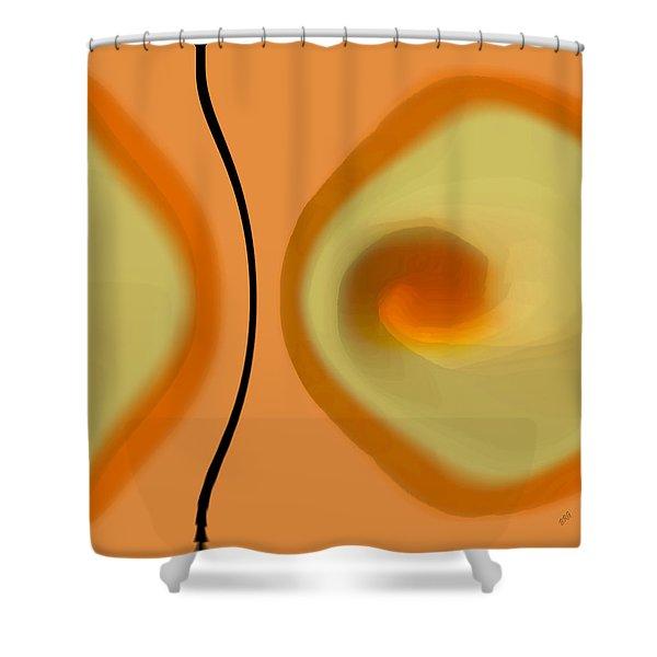 Egg On Broken Plate Shower Curtain