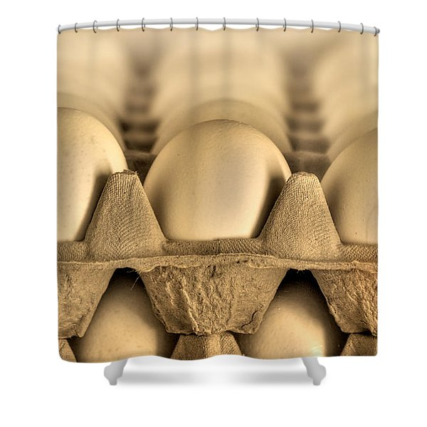 Eggs Shower Curtain