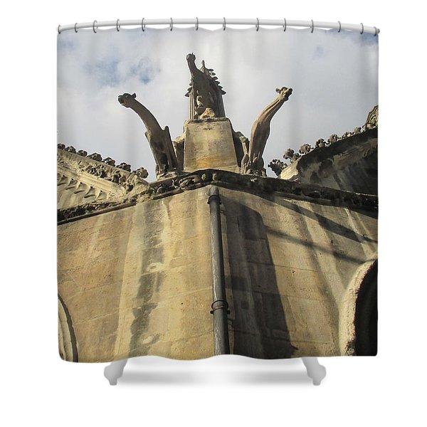 Eglise Saint-severin, Paris Shower Curtain