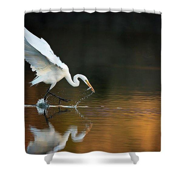Egret At Sunset Shower Curtain