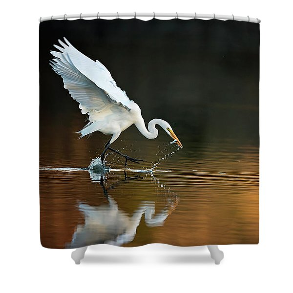 Egret At Sunset Shower Curtain