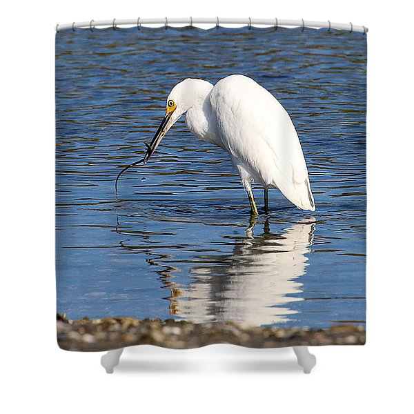 Shower Curtain featuring the photograph Egret Eating Eel 4 by William Selander