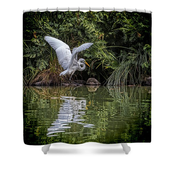 Egret Hunting For Lunch Shower Curtain
