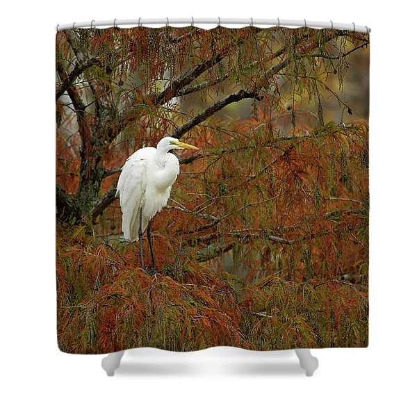Egret In Autumn Shower Curtain