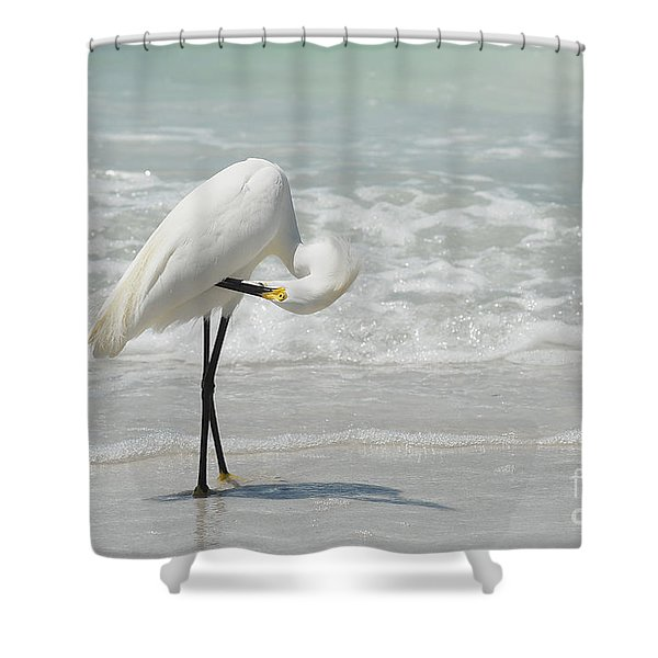 Egret Preening 6278 Shower Curtain
