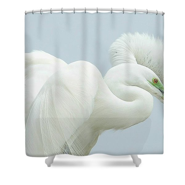 Egrets In Love 2 Shower Curtain