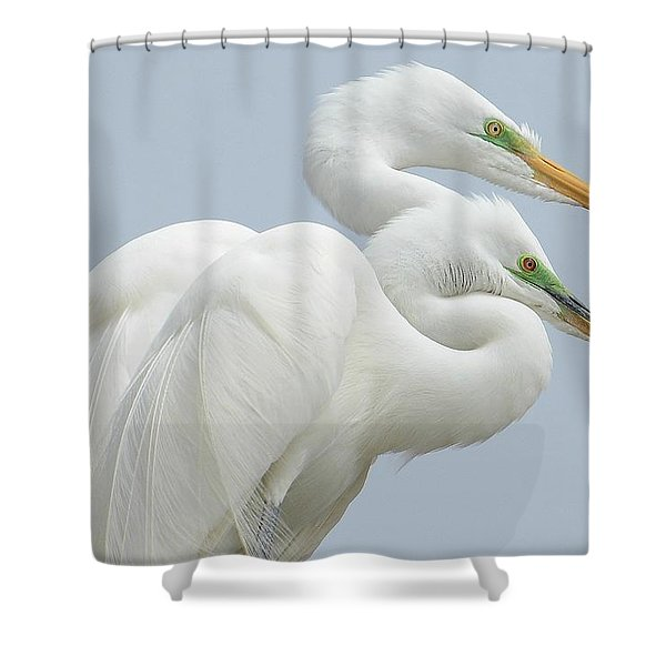 Egrets In Love Shower Curtain