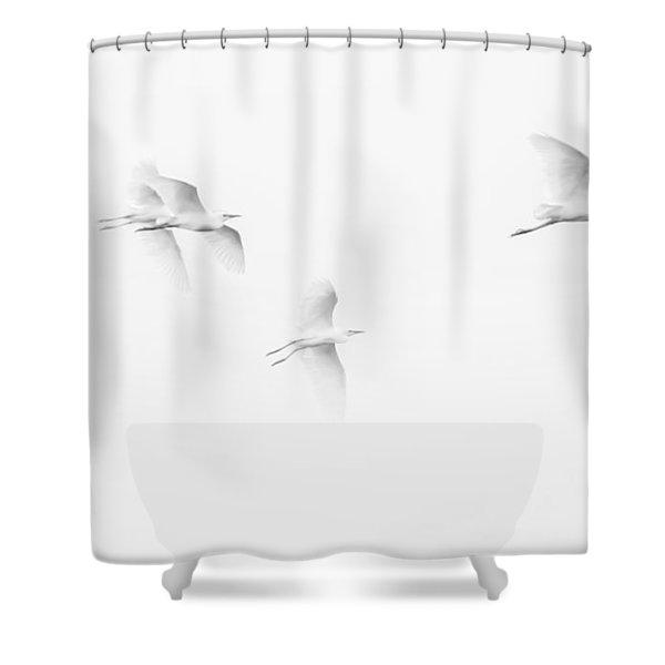 Egrets White On White B/w Shower Curtain