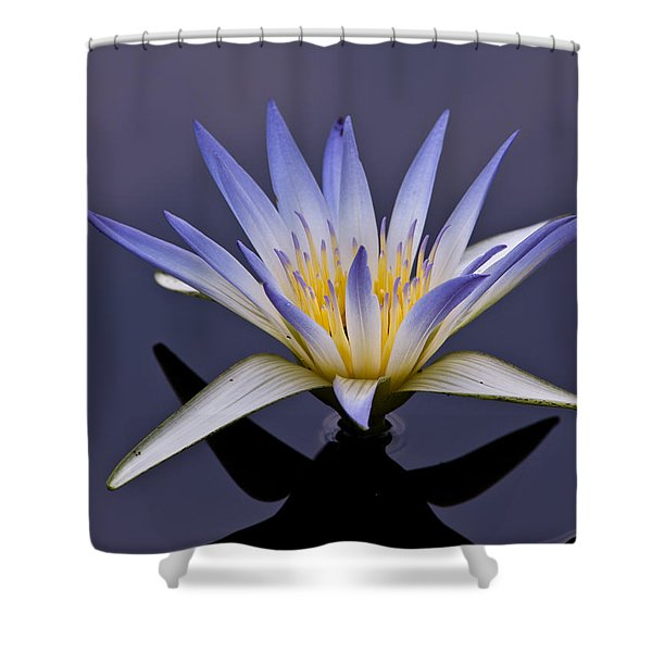 Egyptian Lotus Shower Curtain