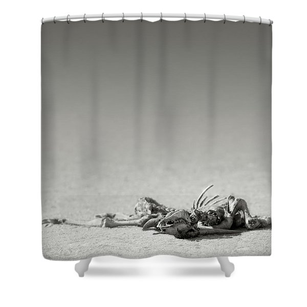 Eland Skeleton In Desert Shower Curtain