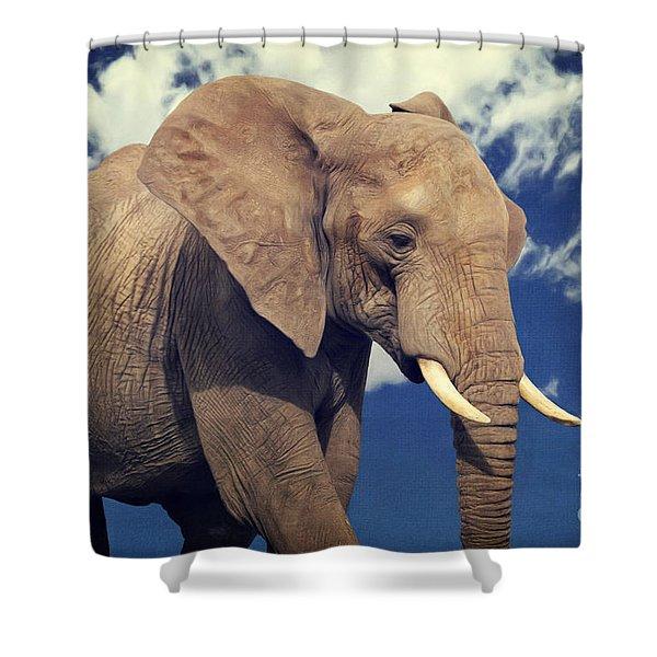 Elefanten Portrait Shower Curtain