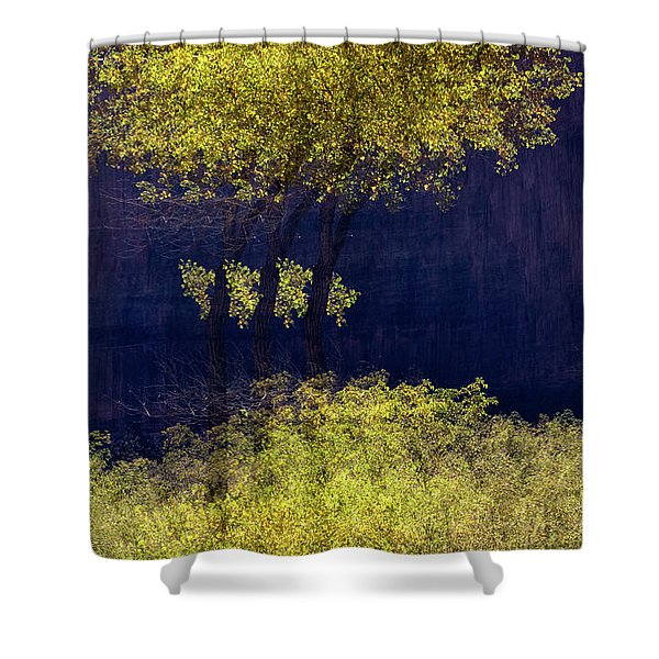 Elegance In The Park Horizontal Adventure Photography By Kaylyn Franks Shower Curtain