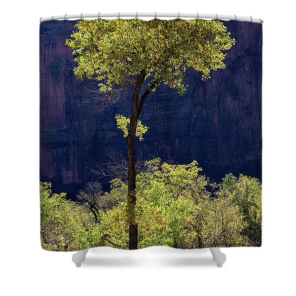 Elegance In The Park Utah Adventure Landscape Photography By Kaylyn Franks Shower Curtain