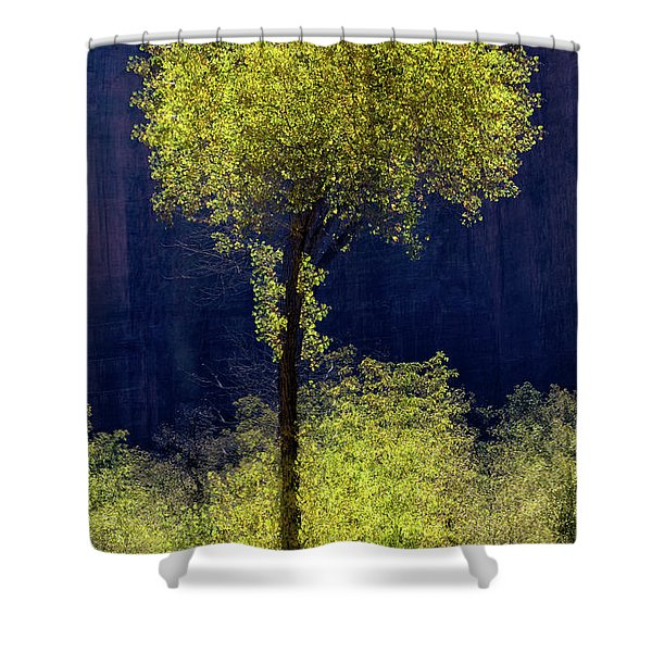 Elegance In The Park Vertical Adventure Photography By Kaylyn Franks Shower Curtain