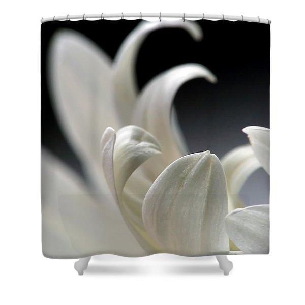 Elegance Shower Curtain