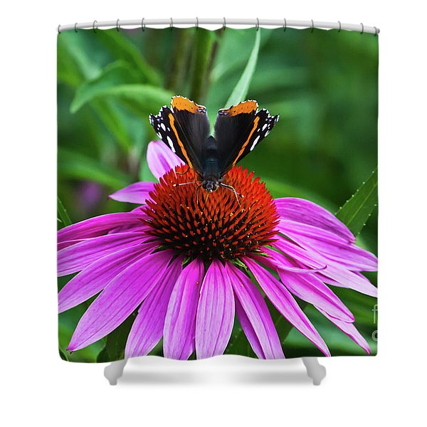 Elegant Butterfly Shower Curtain