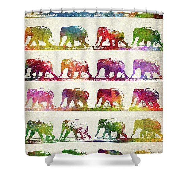 Elephant Animal Locomotion  Shower Curtain