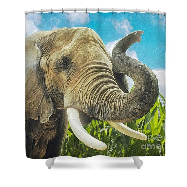 Elephant In The Cornfield Shower Curtain