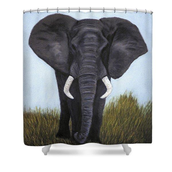 Elephant Shower Curtain