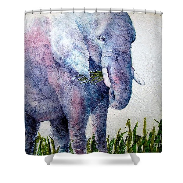 Elephant Sanctuary Shower Curtain