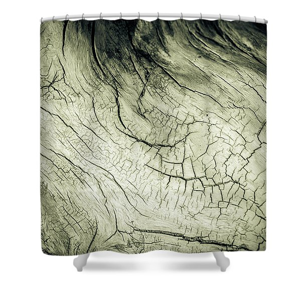 Elephant Wood Of Memory Shower Curtain