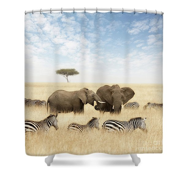 Elephants And Zebras In The Grasslands Of The Masai Mara Shower Curtain