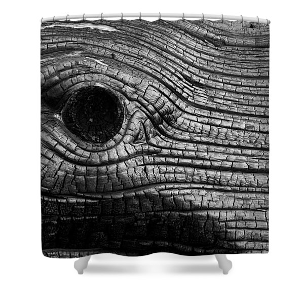Elephant's Eye Shower Curtain
