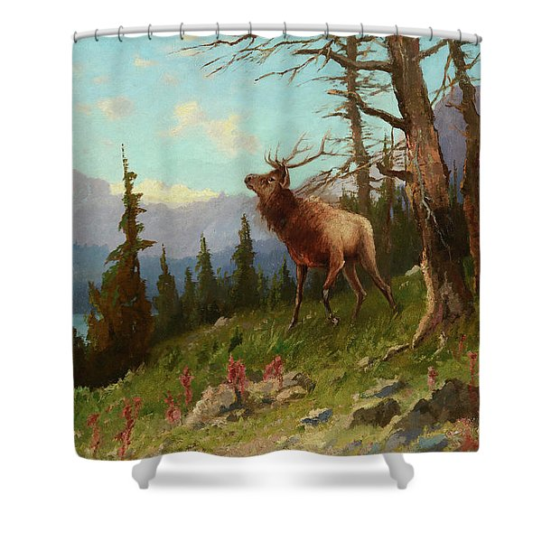 Elk In The Mountains Shower Curtain