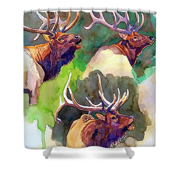 Elk Studies Shower Curtain