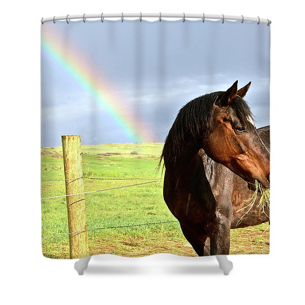 Ella And The Rainbows Shower Curtain