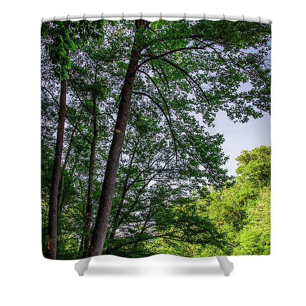Emerald Afternoon Shower Curtain