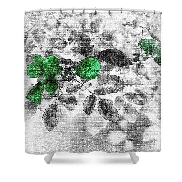 Emerald Green Of Ireland Shower Curtain