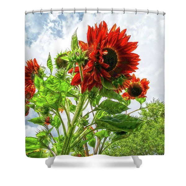 Emeralds And Fire Shower Curtain