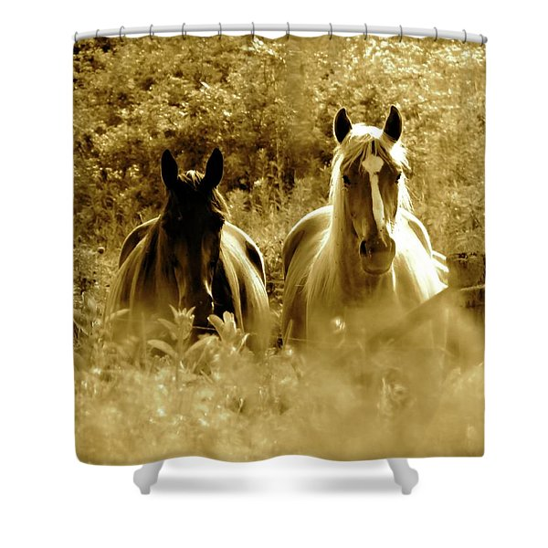 Emerging From The Farm Shower Curtain